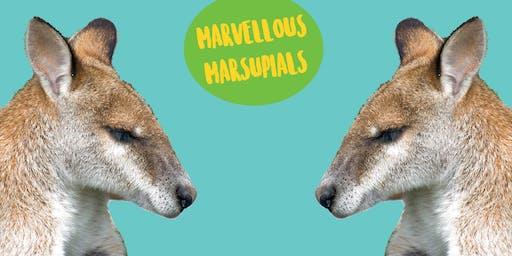 Marvellous Marsupials - Art Class For Older Kids