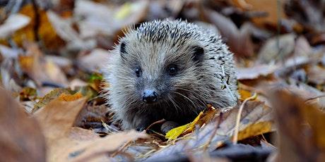 Hackney Biodiversity Partnership Meeting tickets