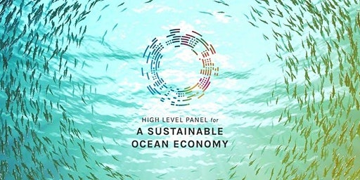 A Conversation with the High Level Panel for a Sustainable Ocean Economy