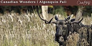 Canadian Wonders | Algonquin Photo Workshop - Autumn...