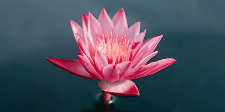 Sacred Sunday's: Mindfulness Meditation and Teaching tickets