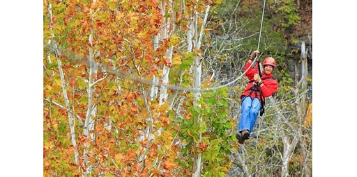 CANOPY TOURS (2020-02-22 starts at 10:00 AM)