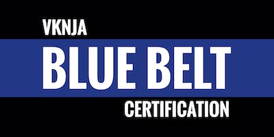 Viking Ninja Blue Belt Certification