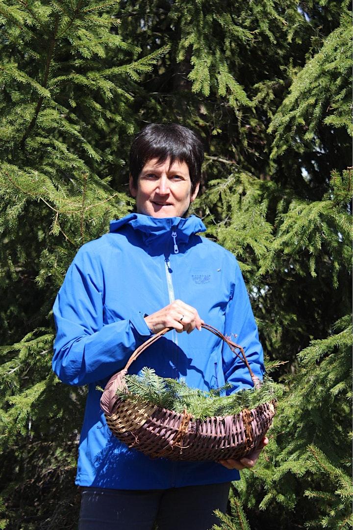 Image de Initiation à la cueillette de plantes et de champignons sauvages d'été