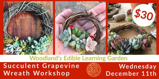 Succulent Grapevine Wreath Class in the Garden