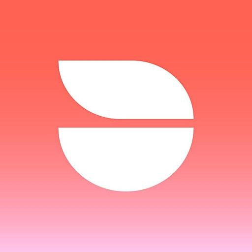 The Drop Festival  logo