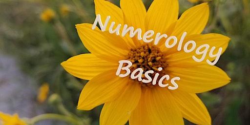 Numerology Basics!
