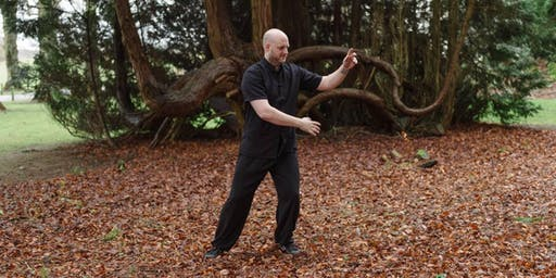 Five Element Qi Gong,  and  Mesmeric Meditation Workshop