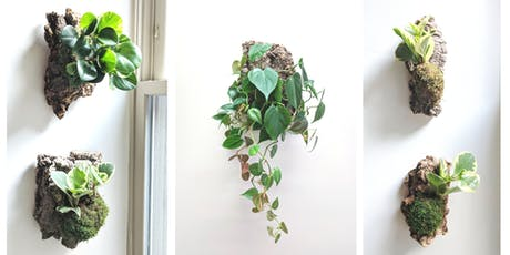 Mounted Tropical Plants: A Living Wall Hangings Workshop tickets