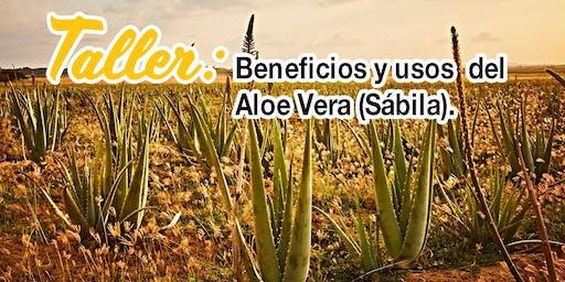 Taller: Usos y beneficios del Aloe Vera