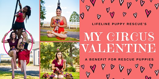 My Circus Valentine: A Benefit for Rescue Puppies!