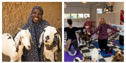 Goat Yoga & Cuddling for a Cause