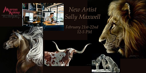 Sally Maxwell Winter Show February 21st and 22nd 12-5 PM