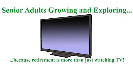 Retirement Pleasures & Pitfalls: A Discussion & Social Event for Seniors 48 tickets