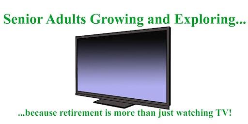 Retirement Pleasures & Pitfalls: A Discussion & Social Event for Seniors 48
