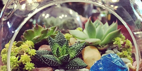 Terrarium Workshop - Sun, Feb 9th tickets
