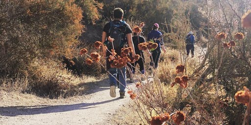 INFO SESSION: Backpacking 101