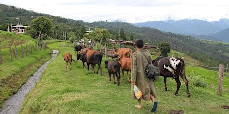 10 Days Druk Path Trek with Culture & Nature Tour in Pristine Bhutan tickets