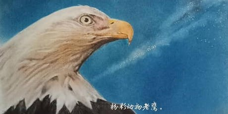 Eagle Portrait Drawing tickets