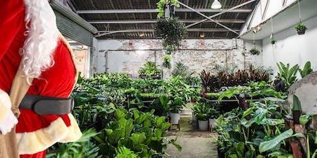 Sydney - Huge Indoor Plant Warehouse Sale - Christmas Bonanza tickets