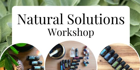 Natural Solutions Workshop