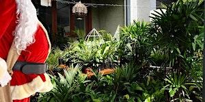 Brisbane - Huge Indoor Plant Warehouse Sale -...