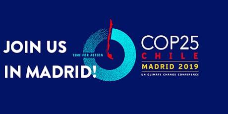 Capacitacion a la animación El Mural del Clima en Madrid a la COP25 entradas