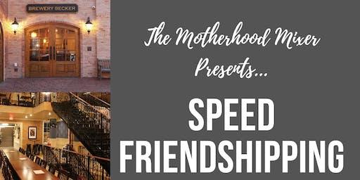 The Motherhood Mixer Speed Friendshipping