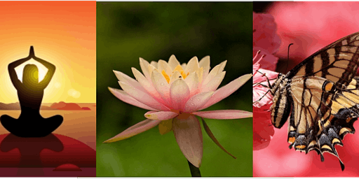 Women's Yoga and Self Care Retreat at Kashi Ashram