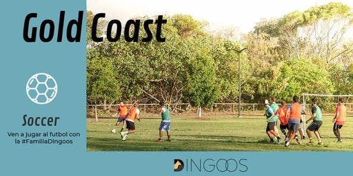 Dingoos Soccer Match - Gold Coast