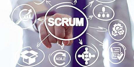 21/12 - Scrum & Lean IT - Curso preparatório gratuito para as certificações Scrum Essentials, Scrum Master Foundation, Scrum Product Owner Foundation e Lean IT Essentials com Adriane Colossetti ingressos