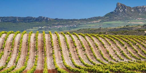Wine Education Seminar: The Splendor of Spain