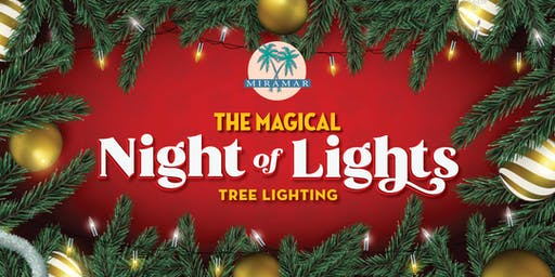 The Magical Night of Lights