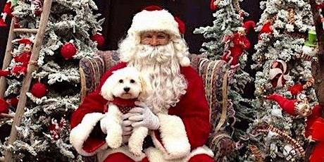 Collingwood Hyundai Free Santa Pics Weekend Dec 14-15 tickets