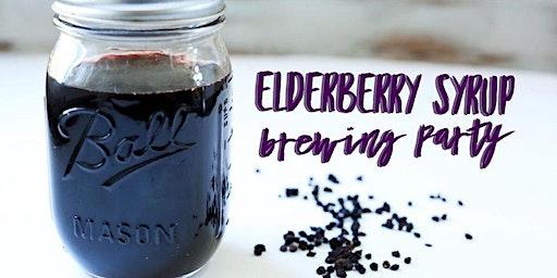 DIY Elderberry Syrup Brewing with Ellen