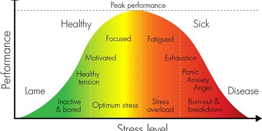 Peak Performance  Health: Stress Reduction for Daily Living