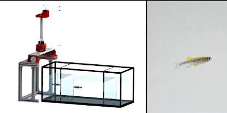 One PDH: When Zebrafish Met Engineering tickets