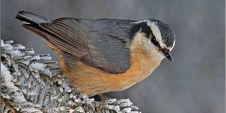 Sanatorium Site Bird Walk - Holiday Park tickets
