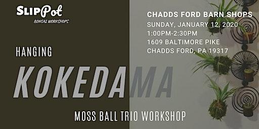 Hanging Kokedama Trio at Chadds Ford Village and Barn Shops