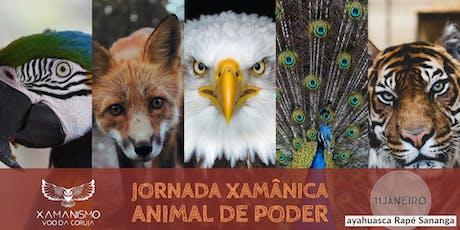 Jornada Xamânica Animal de Poder ingressos