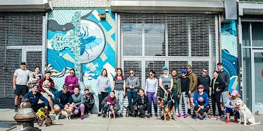 Runstreet Brooklyn Dog Art Run