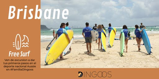 Dingoos Free Surf - Brisbane