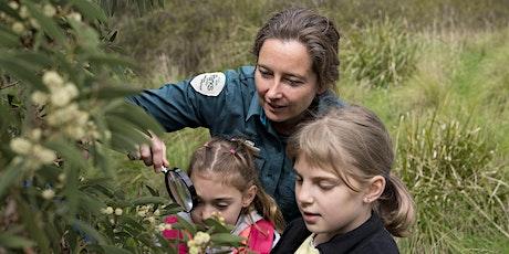 Junior Rangers Flora Explorer - Coolart Homestead and Wetlands tickets