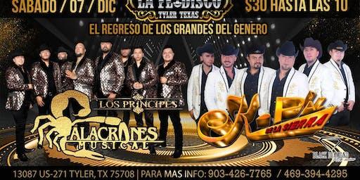 Alacranes Musical K-paz De La Sierra Tyler Tx