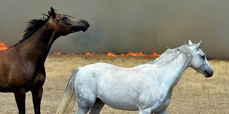 Horses and Bushfires Safety Workshop tickets