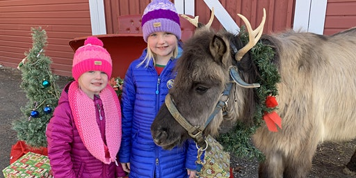 Intro to Riding Class & Meet and Greet with Santa and his reindeer pony