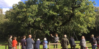 The Story of Sherwood – Guided Walk