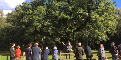 The Story of Sherwood – Guided Walk tickets