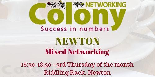 Colony Networking (Newton) - 19 November 2020