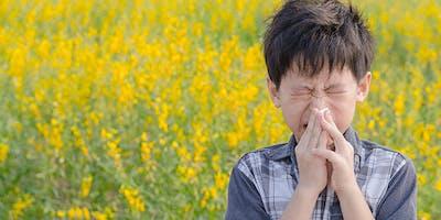 Heuschnupfen und Allergien - Nachhaltig behandeln mit TCM